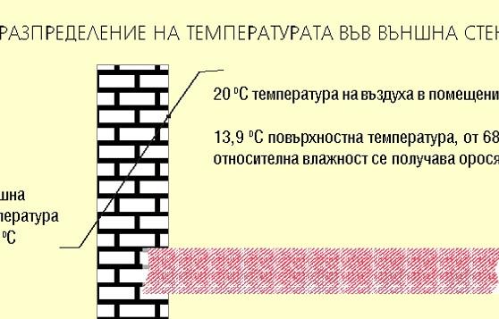 Логос трейд ЕООД