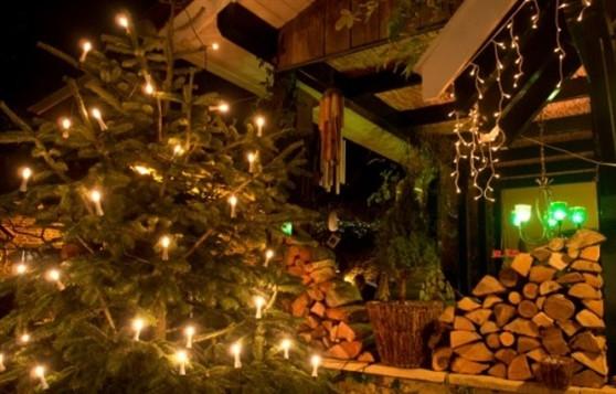 www.gartenhaus-gmbh.de