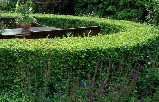 www.garden-and-flowers.de